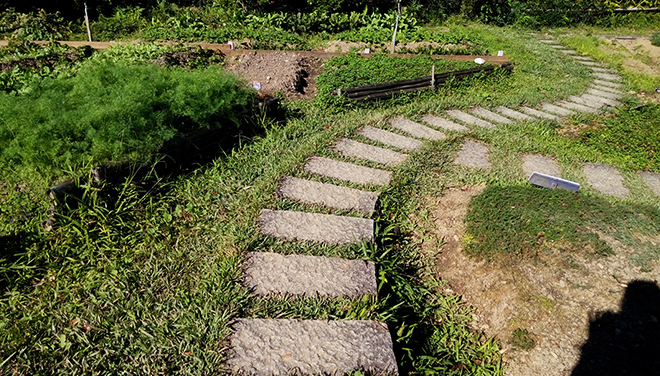 Horta, Lavender Cottage (薰衣草森林)